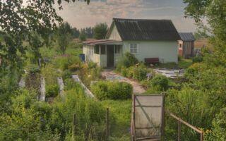 Можно ли застраховать незарегистрированный дачный дом?  Особенности оформления